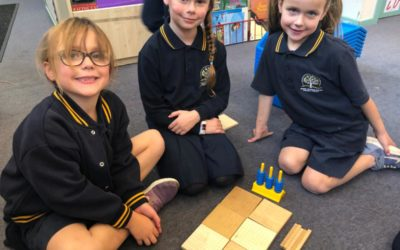 Grade 1 and 2 Maths Flexible Groupings – Place Value