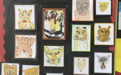 Big Cat Faces – Observational drawing by Year 3 & 4