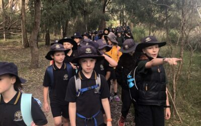 3/4 Lysterfield Excursion